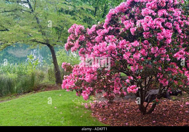 Floras Lake Oregon Stock Photos Floras Lake Oregon Stock