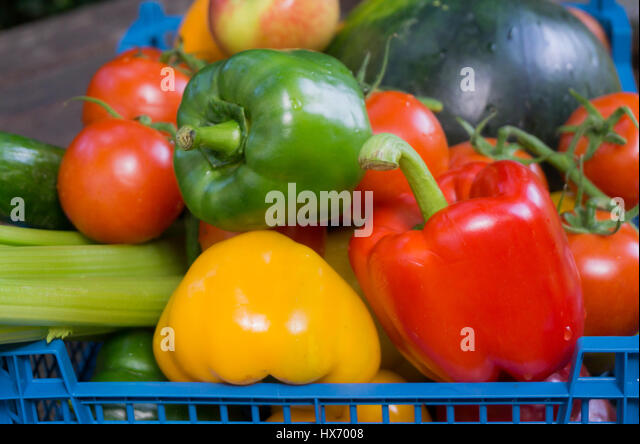 fruit basket flowerland are tomatoes vegetables or fruits