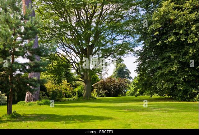 English garden lawn stock photos english garden lawn for Garden trees england
