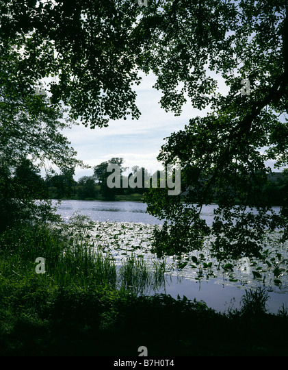 Loch Ken Stock Photos Amp Loch Ken Stock Images Alamy