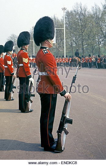 Grenadier Guards Stock Photos Amp Grenadier Guards Stock Images Alamy