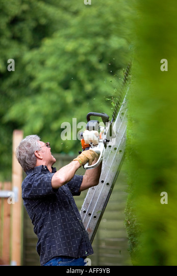Man Cutting Hedge Chainsaw Maze Longleat House Town