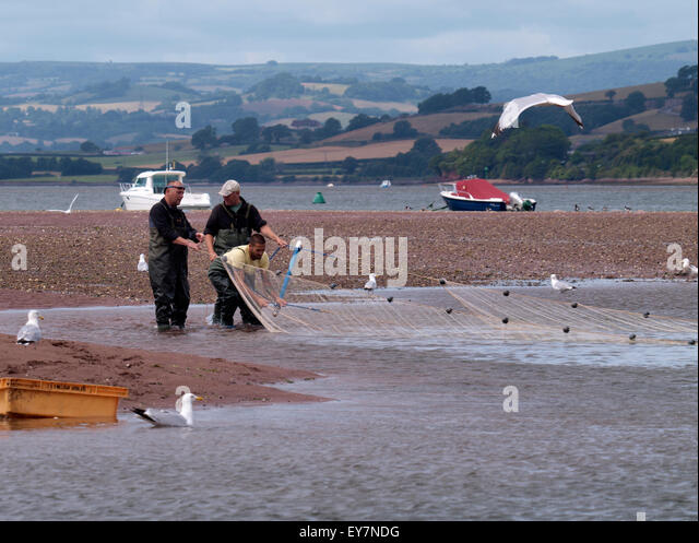 Seining stock photos seining stock images alamy for Drag net fishing