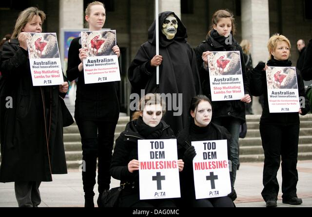 animal rights analysis about peta activist It wouldn't be the first time an animal rights organization was summoned before a   especially when considering that other animal rights activists have taken   and cats 'off the books,' meaning that dogs and cats could be euthanized without .