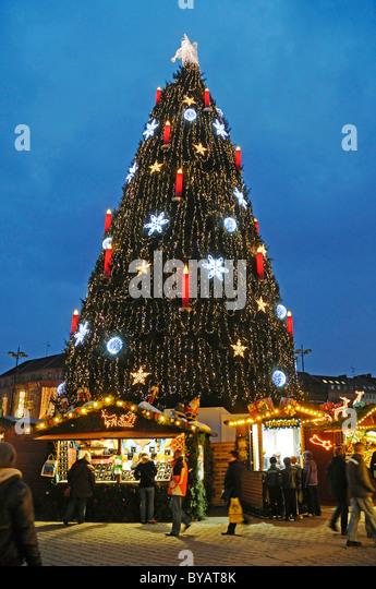 christmas tree market stands christmas market dortmund ruhr area north rhine - Christmas Tree Market
