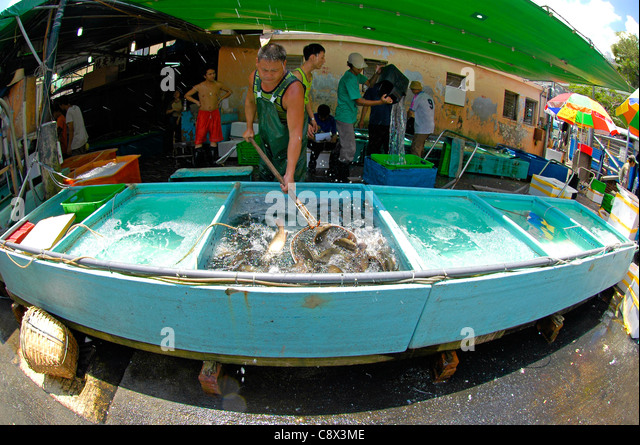 Aberdeen wholesale fish market stock photos aberdeen for Wholesale fish market near me