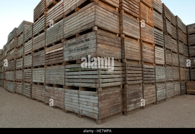 Wooden Agricultural Potato Storage Boxes Stock Image