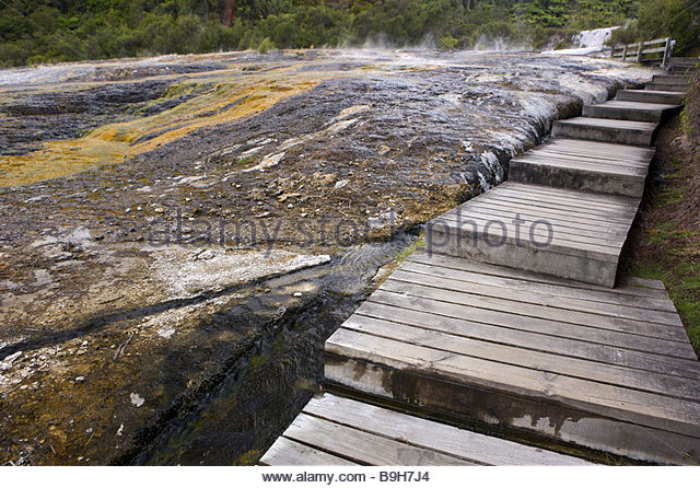 Captivating New Zealand North Island Orakei Korako Emerald Terrace Wood Way Destination  Sight Thermal