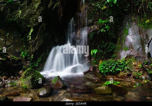 Spring Clean Stock Photos Amp Spring Clean Stock Images Alamy