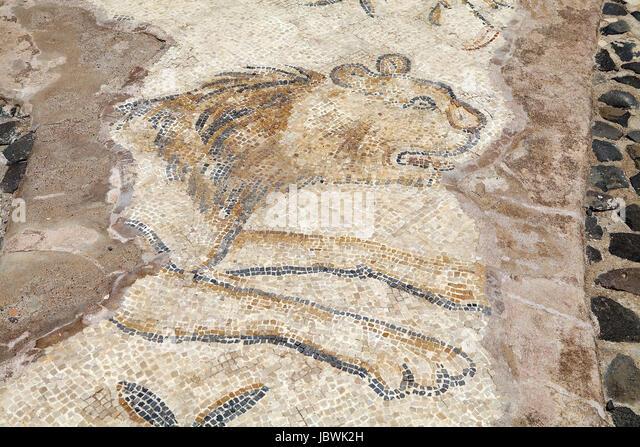 Bet Shean Mosaics Art - image 8