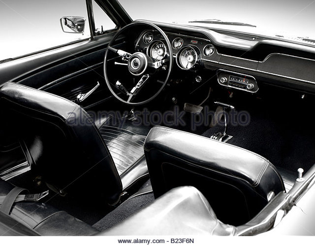 black leather trim stock photos black leather trim stock images alamy. Black Bedroom Furniture Sets. Home Design Ideas
