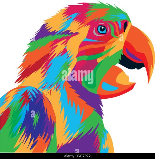 colorful parrot drawing icon stock photos amp colorful