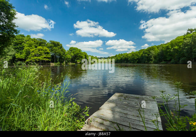 Fish pond uk stock photos fish pond uk stock images alamy for Koi pool water gardens poulton