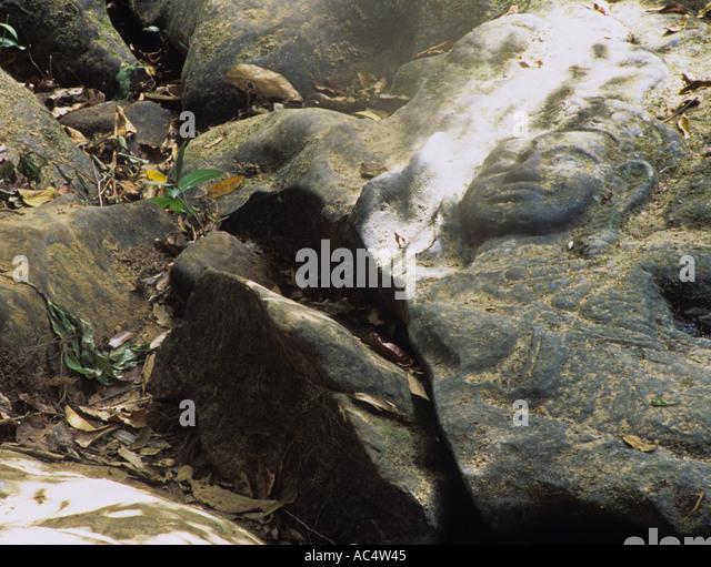 Lingas stock photos images alamy