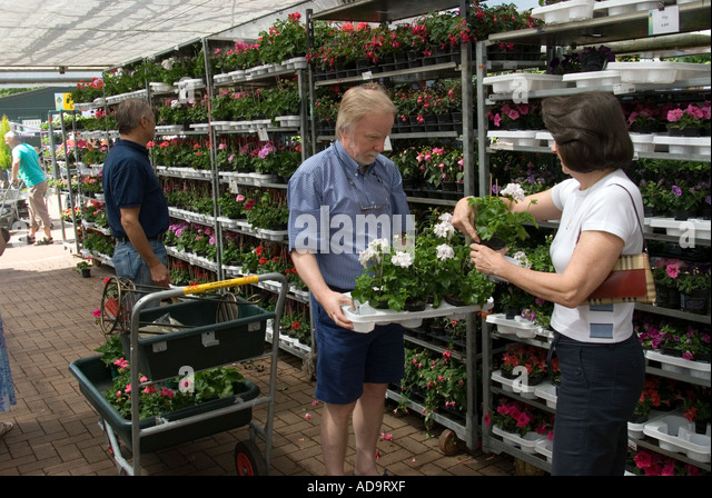 Terrific Garden Centre Uk Shoppers Stock Photos  Garden Centre Uk Shoppers  With Interesting People Choosing Plants In Garden Centre Berkshire Uk  Stock Image With Endearing Iron Acton Garden Centre Also Cbeebies In The Night Garden In Addition Hyundai Garden Grove And Dobbies Garden Centre Southport As Well As The Garden House St Albans Additionally Gardening Trolley From Alamycom With   Interesting Garden Centre Uk Shoppers Stock Photos  Garden Centre Uk Shoppers  With Endearing People Choosing Plants In Garden Centre Berkshire Uk  Stock Image And Terrific Iron Acton Garden Centre Also Cbeebies In The Night Garden In Addition Hyundai Garden Grove From Alamycom