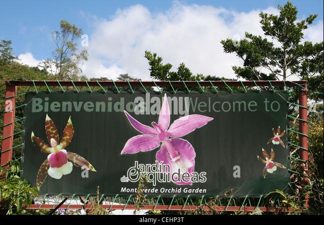 Orchids of garden stock photos orchids of garden stock for Jardines de orquideas