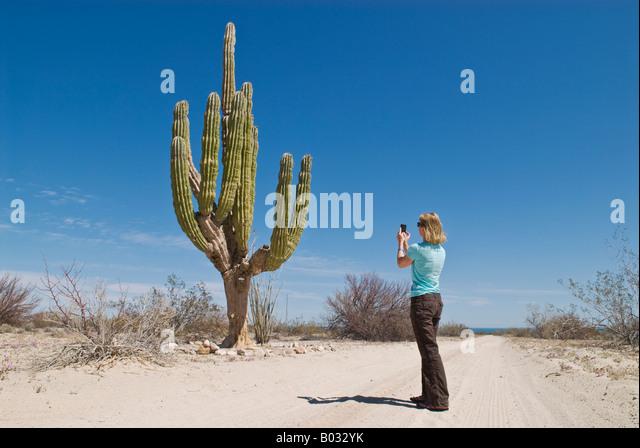 adult finder california cacgi
