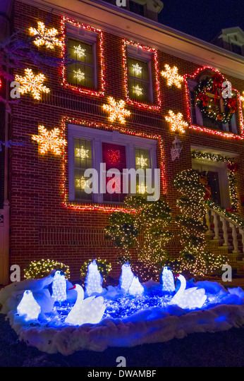 Christmas Lights In Brooklyn New