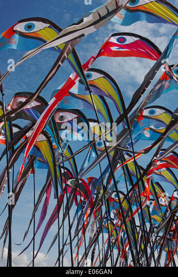 Weymouth kite festival