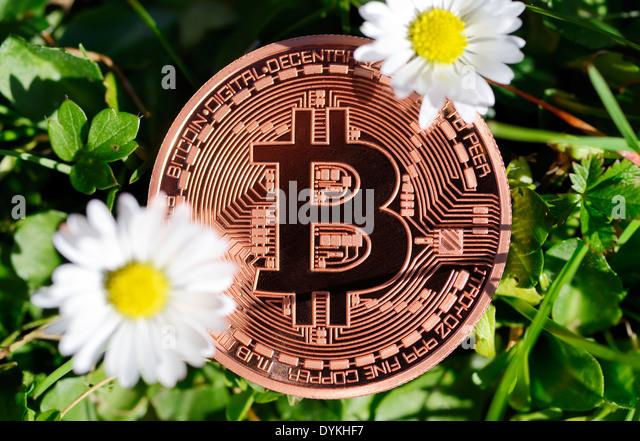 Bitcoin kaufen – unkompliziert und schnell. Seit dem Jahr legte der Bitcoin-Kurs eine rasante Rally hin, daran änderten auch Rückschläge durch Hackerangriffe nichts.