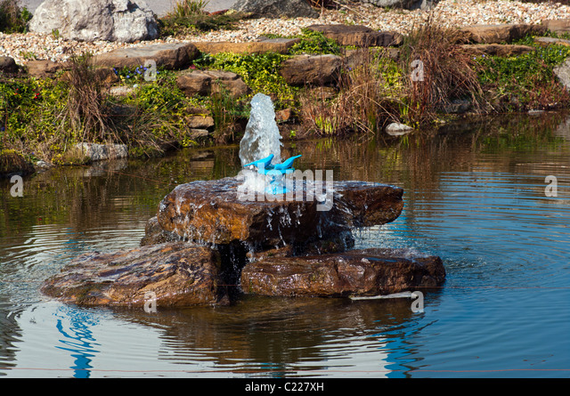 Fountains pond stock photos fountains pond stock images for Ornamental fish pond