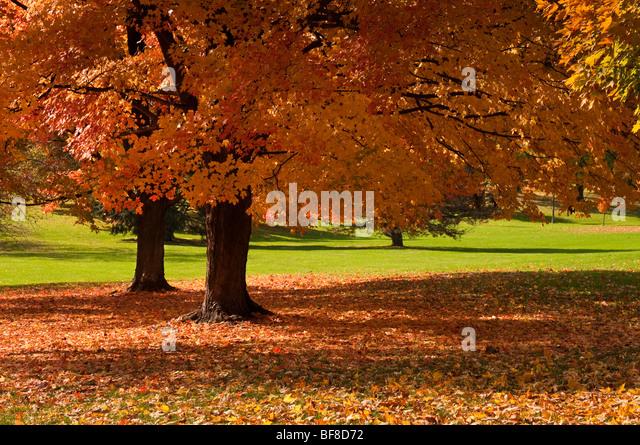 Beautiful Scene Missouri In Autumn Stock Photos Beautiful Scene