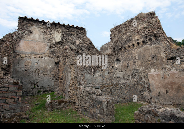 the history and destruction of vesuvius Archaeologists discover tomb in pompeii that predates vesuvius  about four  centuries before vesuvius erupted in 79 ce, raining destruction on  bce, a  crucial time in the region's history, when the battle for control of the.