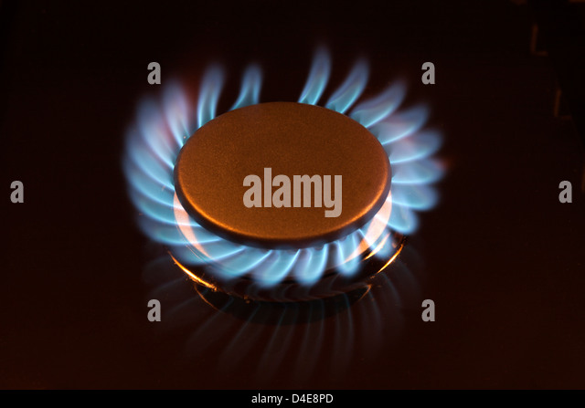 Gas Oven are Specially designed provide absolute