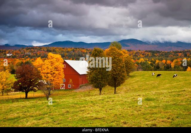 New England Barn Stock Photos Amp New England Barn Stock