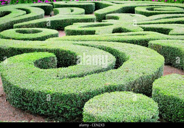 Labyrinth Maze Garden Stock Photos Labyrinth Maze Garden Stock