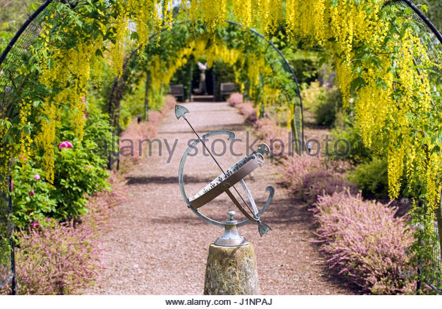 Gorgeous Laburnum Walk Stock Photos  Laburnum Walk Stock Images  Alamy With Inspiring View With Armillary At The Laburnum Walk At The Garden At The Bannut  Bringsty Herefordshire May With Nice Accommodation In Covent Garden Also Covent Garden Tgi In Addition Garden Insect Mesh Netting And My Fairy Garden Pop Up Book As Well As Decorative Garden Mirrors Additionally Keep Cats Out Of My Garden From Alamycom With   Inspiring Laburnum Walk Stock Photos  Laburnum Walk Stock Images  Alamy With Nice View With Armillary At The Laburnum Walk At The Garden At The Bannut  Bringsty Herefordshire May And Gorgeous Accommodation In Covent Garden Also Covent Garden Tgi In Addition Garden Insect Mesh Netting From Alamycom