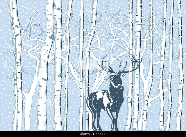 Reindeer Antlers Snow Stock Photos & Reindeer Antlers Snow Stock ...