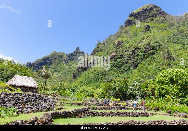 Limahuli Garden Preserve National Tropical Stock Photos