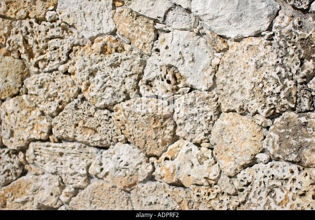 florida coral rock wall oolite stock image