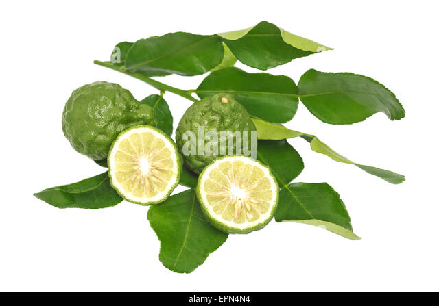 Bergamot Herb Cooking Stock Photos & Bergamot Herb Cooking ...