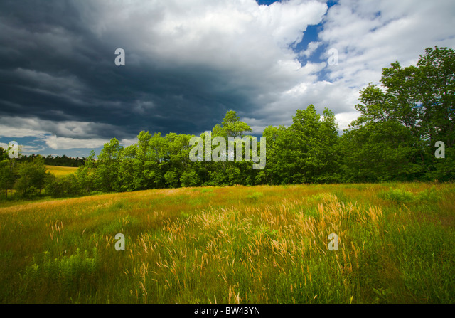 Pretty Oakfield Stock Photos  Oakfield Stock Images  Alamy With Handsome Sunlit Field And Storm Clouds Oakfield Nova Scotia  Stock Image With Comely Garden Square Dental Practice Also Garden Warfare In Addition Rose Garden Tea And In The Night Garden Gazebo As Well As Kew Gardens Weddings Additionally Plants Ideas For A Garden From Alamycom With   Handsome Oakfield Stock Photos  Oakfield Stock Images  Alamy With Comely Sunlit Field And Storm Clouds Oakfield Nova Scotia  Stock Image And Pretty Garden Square Dental Practice Also Garden Warfare In Addition Rose Garden Tea From Alamycom