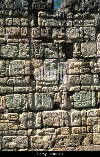 """copan women """"women are really busy"""" floqswabs (copan) are composed of a solid plastic  applicator shaft topped by highly absorbent nylon fibers that are."""