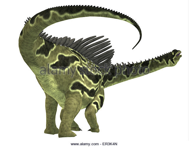 Agustinia Is A Herbivorous Titanosaur Dinosaur That Lived During The Cretaceous Period Of South America