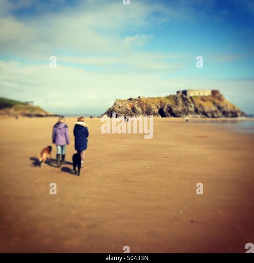 Dog Walking Eastbourne Beach