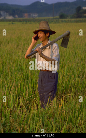 chinese farmers - photo #33
