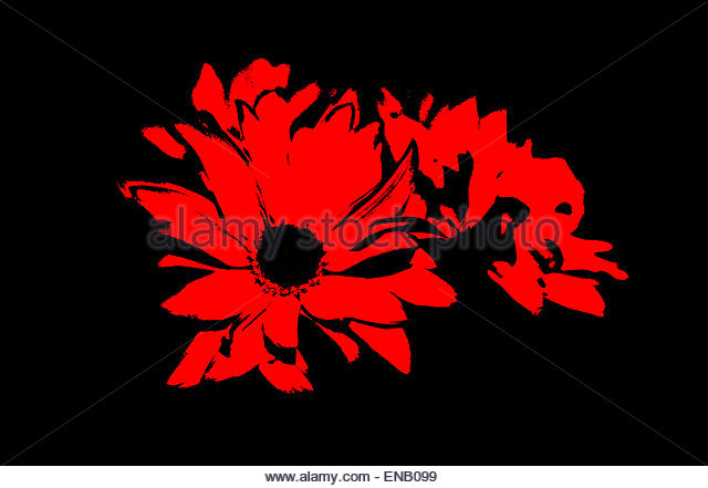 high contrast background - photo #32