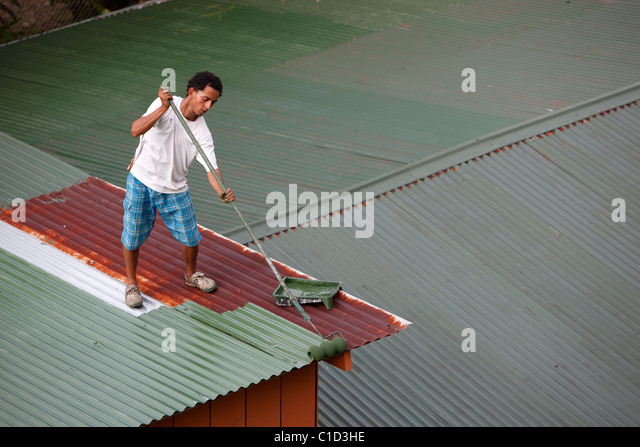 Amazing A Man Paints A Tin Roof, Drake Bay, Costa Rica   Stock Image
