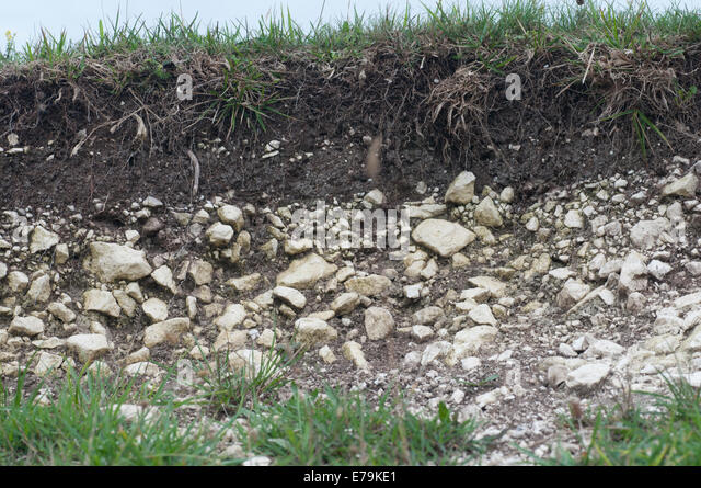 Soil profile stock photos soil profile stock images alamy for Soil profile video
