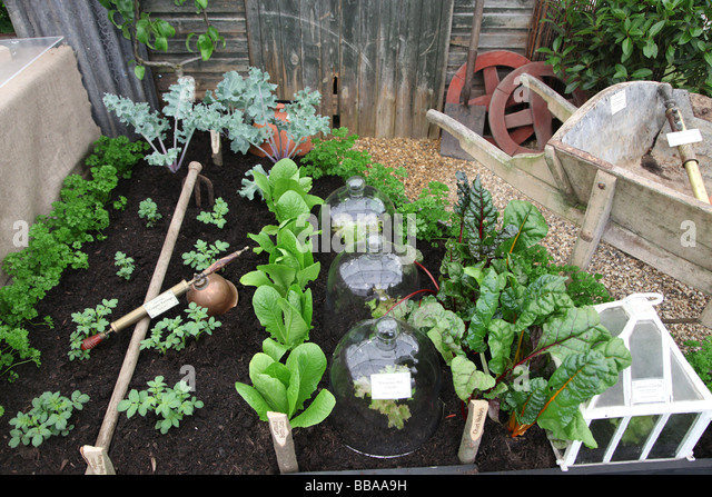 Vegetable Bed Showing Plants And Tools Needed RHS Chelsea Flower Show    Stock Image