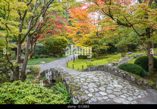 stone bridge and fall foliage in seattle japanese garden stock image