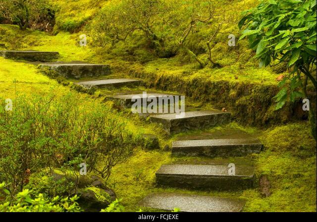 Natural Garden Stairway Portland Japanese Stock Photos Natural Garden Stairway Portland