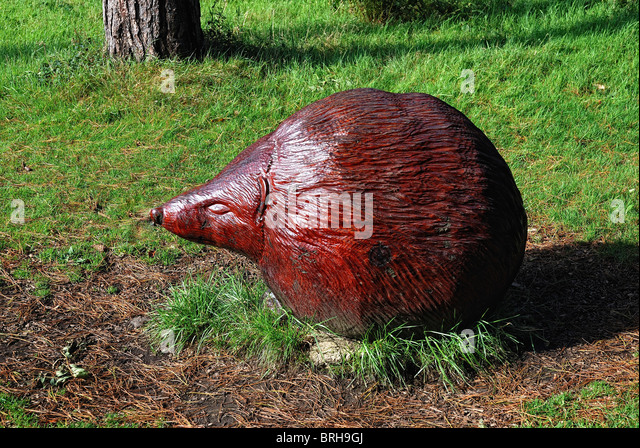 Wood carving animal uk stock photos