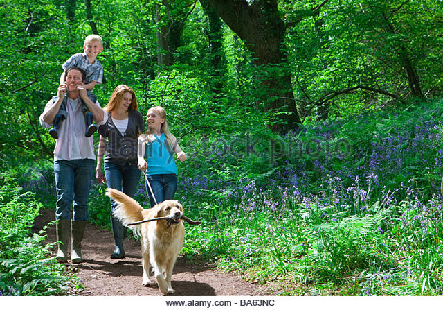 Family Walking In Forest With Bluebell Flowers
