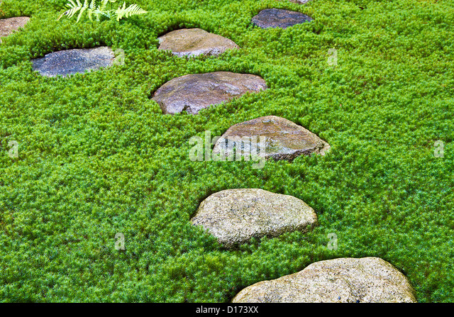 Beautiful Stepping Stones In Traditional Japanese Garden, Takayama, Gifu Prefecture    Stock Image