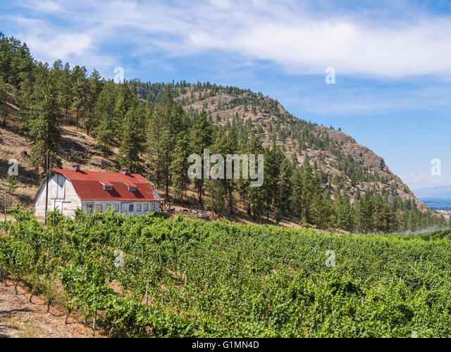 Image Result For Oliver Garden Near Osoyoos Bc Canada